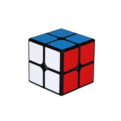 Cubo rubik 2X2 rompecabezas de entrenamiento juguetes educativos